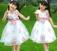 Retail 1 Pcs New 2014 Summer Girl Party Dress Princess Girls Wedding Dresses Chiffon Girls Large flower bow veil dress TZ42