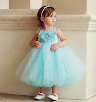 Frozen Flower Girls' lace Dresses Baby tutu dress 5pcs/lot T64