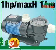 0.75KW/1HP SWIMMING POOL PUMP with Filter, pool filter pump Max Flowrate 275 L/min (16500 L/H) Max head 11M(China (Mainland))