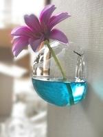Light bulb transparent diy flower glass vase modern fashion hydroponic decoration 2014 vase glass pots