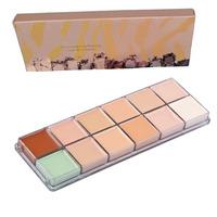 2014 Hot Sale professional Makeup nake 12 colors Natural Face Concealer Cosmetics 12color Palette make up set