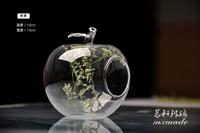 Light bulb transparent diy flower apple glass vase modern fashion hydroponic decoration 2014 vase glass pots