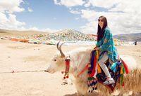 2014 New Hot Fashion Ethnic Style Scarves Winter Warm Shawl  Woman Scarf