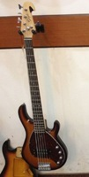 2014 new TL hand 5 string bass guitar