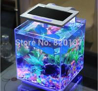 Reliable 2014 High Quality Black/ White Mini Desktop Lamp Light Fish Tank Aquarium Clock,freeshipping