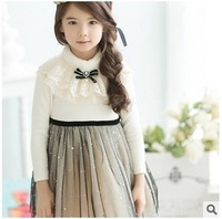 2014 New Arrival Korean Girls Fashional Winter Dress~Beautiful Lace Turtleneck And Sweet Mesh-Made Sweep Dress Can't  miss it ~