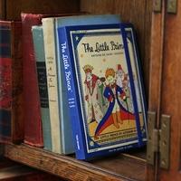 Korea stationery 7321 2015 europe style vintage diary punctuated , book petit prince