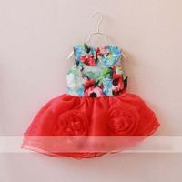 New 2015 Children Dress Autumn Girl Flower Party Dress Cute Floral Printed Kid Sundress Girls Ball Gown 3901