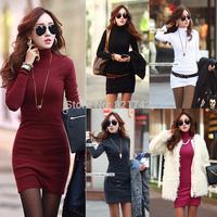 Fashion Womens Korean Turtleneck Casual Slim Long Sleeve Stretch Bodycon Fall Winter Warm Bottoming Mini Dress