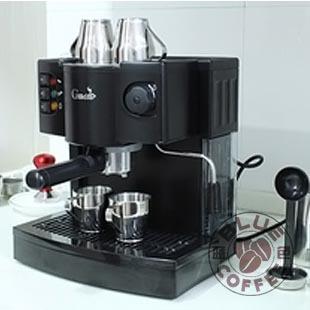 Italian steam coffee machine professional cappuccino coffee(China (Mainland))