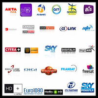 13 month channel Subscription Sky German, Sky UK, SKY it, Bein Sport ect for any receiver that support CCCAM