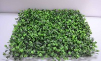 samples link of boxwood mat 25cm*25cm
