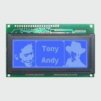 Customizd Listing for Chile Customer: 50PCS X 19264 Graphic LCD Module (Blue Negative STN LCD with White Backlight)