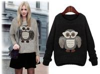 New 2015 Autumn and Winter fashion batwing blouse sleeve o-neck long-sleeve sweater long sleeve owl sweater basic shirt