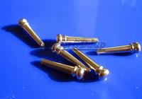 Free Shipping 10SET NEW 6PCS Metal Acoustic Guitar Bridge Pins Guitar Pressure Locking String Nails Pins Silve