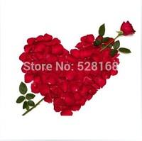 Free Shipping Spa supplies Flower/Skin whitening Makeup Product/ petals bath / petals shower / dried rose petals 50g / bag