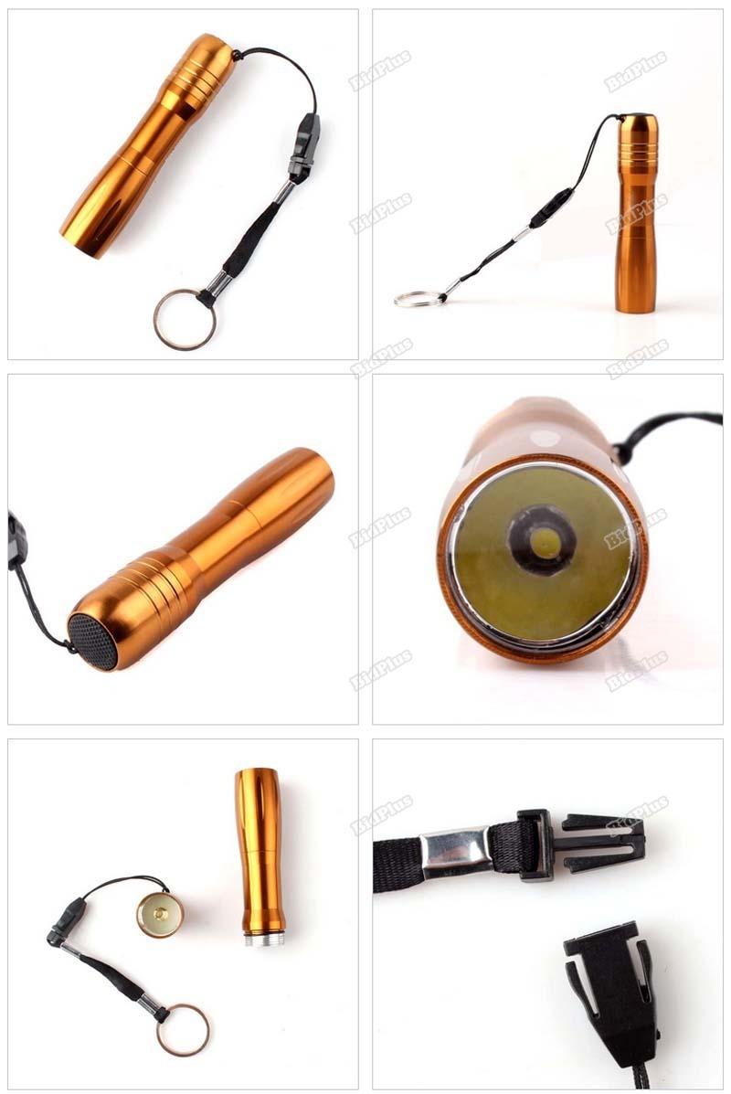 bidplus National! 1W LED AA Handy Camping Flashlight Torch KeyChain Light More benefit(China (Mainland))