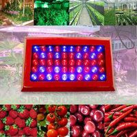 Biggest promotion Full Spectrum 150w Led plant grow light 50x3w Bridgelux leds lamp for Greenhouse Hydroponics system Growing