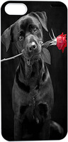 Cute Black Dog With Red Rose In Mouth Hard Unique Designer Slim case for apple iphone 5 5S 5G