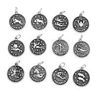 Charm Pendants Round Antique Silver Mixed Zodiac Constellation Pattern 23.0mm x 20.0mm, 12 PCs (K85349)