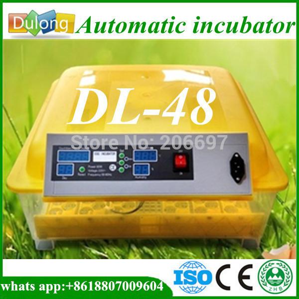 Инкубатор для куриных яиц Dulong 48 DL-A8 инкубатор какой фирмы лучше купить
