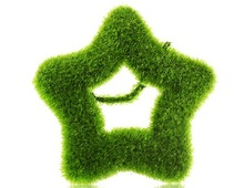 lovecat  Artificial Grass Cut-out Star Shaped Desk Ornament (Green)(China (Mainland))