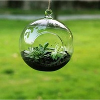 2pcs/lot, Glass Hanging Flower Vases Dia 10cm Round with an Opening Round Bottom,for Planting & Decorating