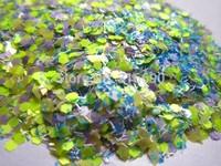 Solvent resistant Glitter for UV Nail Gel Acrylic Polish Making G261