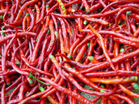 Original packaging  35pcs/pack Vegetable seeds red line pepper seeds Hunan chili Spring and Autumn can be broadcast strong spicy
