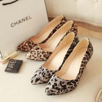 free shipping women's spring and autumn shoes shallow mouth high heels leopard print big size pointed toe pumps dx1364 f-474