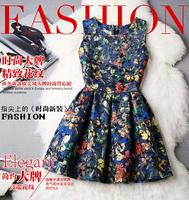 2015 new  autumn and winter plus size woolen princess sleeveless basic tank Butterfly Print dress one-piece dress party dresses