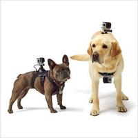 Fetch Dog Harness Chest Shoulder Strap Belt Mount for GoPro Cameras Hero4/3+/3/2