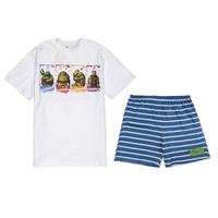 New 2015 Teenage Mutant Ninja Turtles Sets For Big Boys Clothing Cartoon Casual Children's Tracksuits Summer Kids Clothes CS476