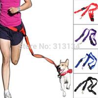 1pc Nylon Running Pet Dog Leash Rope Training Slip Adjustable Traction Collar Rope Chain,dog harnessTraining Walk,pet products
