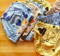 Free Shipping 6Pcs/Lot Baby Boys 100%Cotton Underwear Children Kids Under Briefs