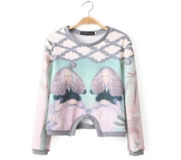 2015 Spring New Women Character Double Girl Print Sweatshirts Fashion Sexy Pullovers Hoodies Desigual Lady Casual Tops CT214