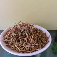chinese perfumes original ephedra sinica herbs tea 100g pure ma huang china natural health care products
