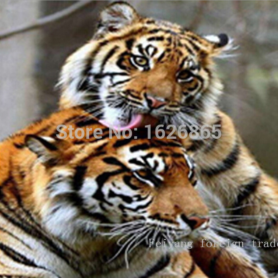 Crafts Diy5d Diamond Embroidery Stitch Style Siberian Tiger Romantic Kiss Bedroom Living Gifts And Decorative Painter 20x20cm(China (Mainland))
