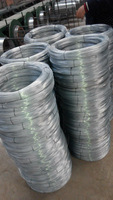 Galvanized Wire, Minimum Order 1 Container ( Factory )