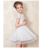 Retail! New 2015 girls dresses children clothing cotton dress kids princess clothes  high quality