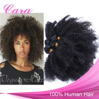 6A Grade Brazilian Virgin Hair Afro Kinky Curly Human Hair Bundle 4Pcs/Lot Free Shipping Natural Black Color Cara Hair Products