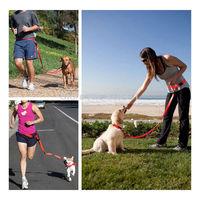 Hands free Dog Training Lead Walking Running Jogging Waist Belt Leash Adjustable Multiple Color