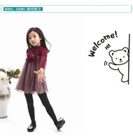 Female baby dress plus velvet dress Korean children explosion models fall and winter children's clothing children's casual dress