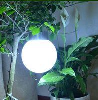 Free Shipping Solar Bulb Lamp Yard Light LED Solar Garden Light