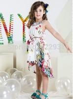 2015 Summer Girl Dress Brand Baby Girls Dresses Kids Clothes Flower Print Embroidery Children Dress Casual Princess Dress 2-7Y