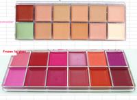 2pcs/lot 12 color nake concealer & nake 3 Frozen lip gloss new brand NK 3 free/drop shipping  make up plate