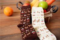 Fall Collection Fashion Lovers Socks Tide Tube Animal Cotton Socks