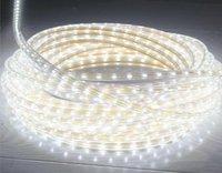 100pcs free shipping LED Strip Light Ribbon Lamps 5m 300 LED SMD 3528 Non-waterproof 12V White/Warm White/Red/Green/Blue/Yellow