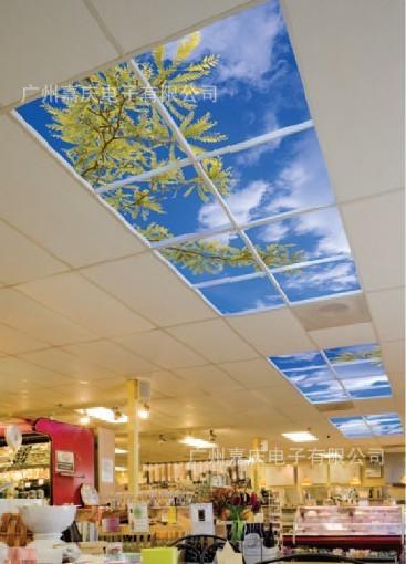 Energy-saving flat panel 600x600 lights Ceiling lights blue and white fashion eye hospital applicable(China (Mainland))