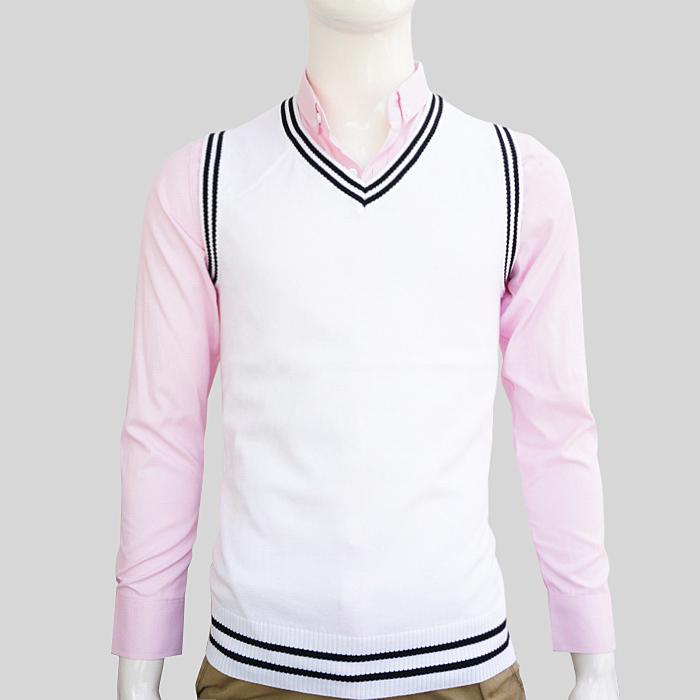 Мужской пуловер Other 2 /v 568